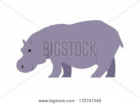 Hippo flat style vector. Wild herbivorous animal. African fauna species. Violet hippopotamus cartoon on white background. For nature concepts, children s books illustrating, printing materials