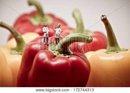 Two chefs debating over bell peppers. Macro photo.