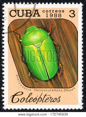 UKRAINE - CIRCA 2017: A stamp printed in Cuba shows beetle Platycoelia flavoscutellata. Ohaus the series Coleoptera circa 1988