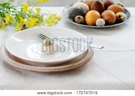 Prepare to Easter. White table setting with empty plates and fork on linen tablecloth decorated by colored brown chicken and quail eggs with yellow flowers. Day light.