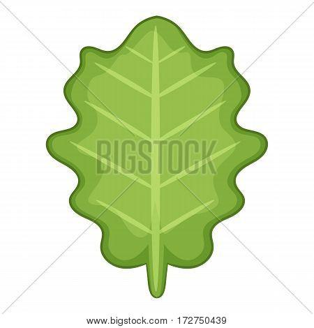 White beam leaf icon. Cartoon illustration of white beam leaf vector icon for web