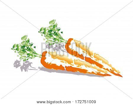 Abstract carrots on white background with a grey shadow.