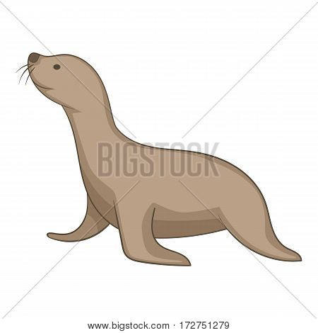 Seal animal icon. Cartoon illustration of seal animal vector icon for web