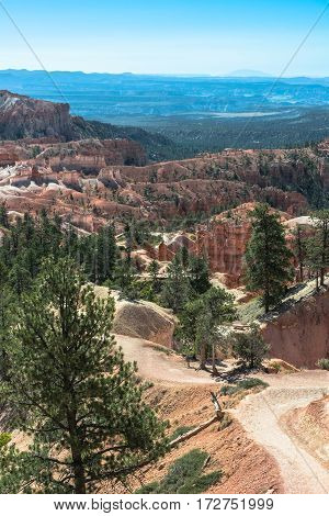 Trail in Bryce Canyon National Park Utah