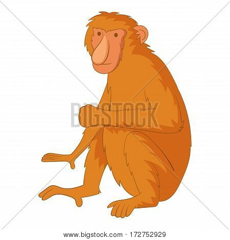 Proboscis monkey icon. Cartoon illustration of proboscis monkey vector icon for web