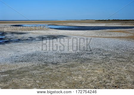 The desert with poles on Camargue on France