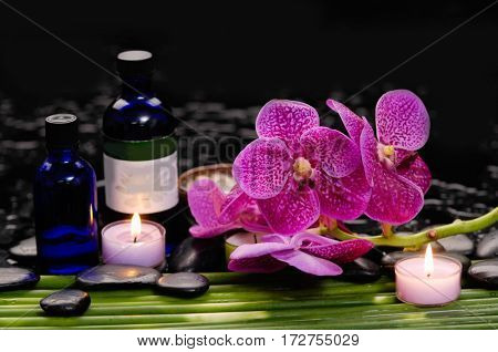 spa concept –red orchid and ,stones , towel,candle on green long leaf