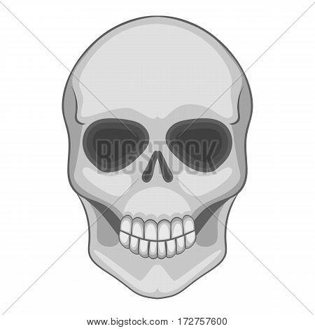 Skull icon. Cartoon illustration of skull vector icon for web