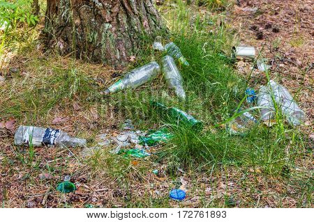 Rubbish in the forest. Broken bottles. It remains rubbish Vles after irresponsible people.