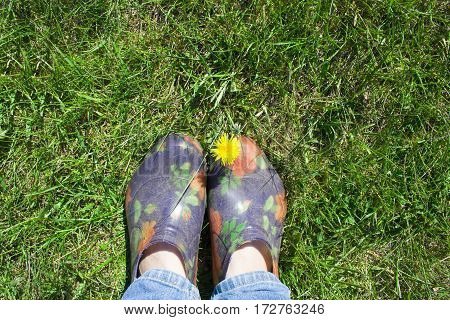 background with place for text galoshes and lawn