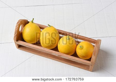 A small wooden crate with four fresh picked lemons on a white wood table. High angle shot in horizontal format with copy space.