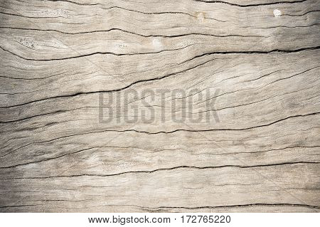 Texture wood oak older style background wooden old dirty