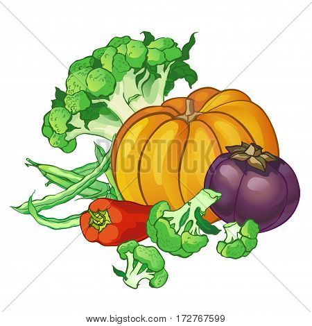 set with broccoli, green string beans, pepper, pumpkin and round eggplant