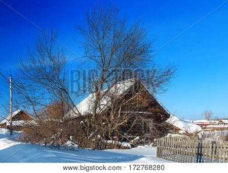 Russian winter village, snow, sun, the central part of Russia
