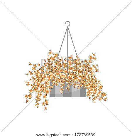 Trailing climber in suspended pot. House plant realistic icon for interior decoration . Vector illustration isolated on white background
