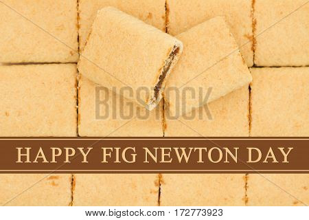 Happy Fig Newton Day greeting Fig Newtons top view with text Happy Fig Newton Day
