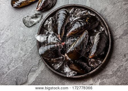 Fresh uncooked raw big mussels on chipped ice on black iron plate over dark slate stone background, Top view