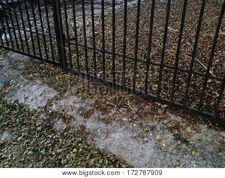 Iron fence gate house with a wilted leaves and twigs on the ground