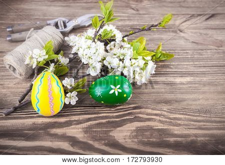 Easter eggs with spring flowers blooming tree and garden tools on old wooden plate in rustic style. Copyspace greeting card