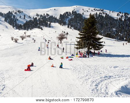Slopes Of Kalavrita Ski Center