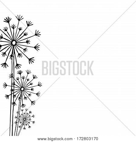 Hand drawn black silhouette three dandelion on a white background