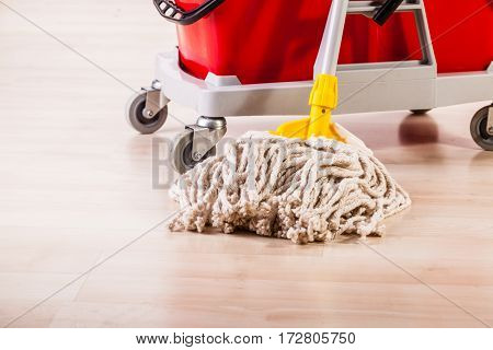 Mop Cleaning Detail