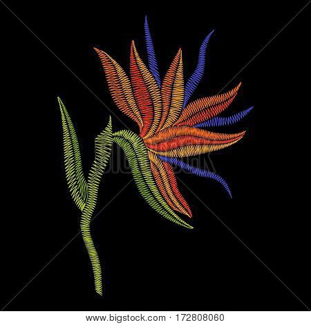 Embroidery Bird of Paradise flowers, tropical Strelitzia. Vector fashion ornamental floral print on black background for fabric traditional folk decoration.