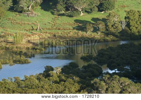 Rural Flowing River