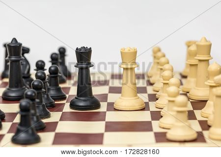 Two chess pieces opponent each other on white