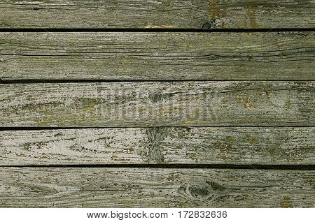 Wood Texture Background with natural pattern, dark green color. Horizontal