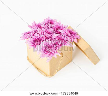 Pink chrysanthemum flower in brown gift box on white background.