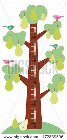 Big tree with green leaves birds and ripe green pears on white background Children height meter wall sticker kids measure. Vector illustration