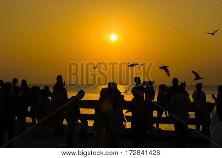 silhouette people and bird fly in sky seascape natural sunset time flare
