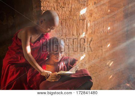 Young Buddhist novice monk reading and study outside monastery Myanmar.