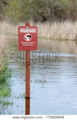 sign cautioning hikers not to feed wildlife submerged in flood waters at Coyote Hills in Northern California after recent torrential rain fall.