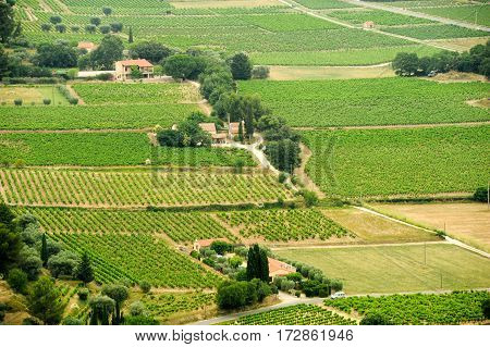 Aerial view of the vineyards of Bandol South of France