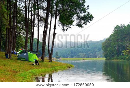 Young man with green camping tent in pine tree forest near the lake at Pang Oung Mae Hong Son Thailand