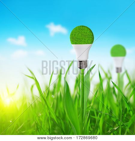 Eco LED light bulb on stem of plant. Concept of green energy.