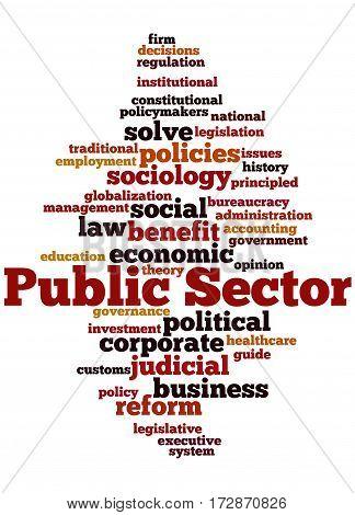 Public Sector, Word Cloud Concept 7