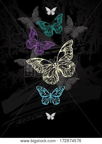 flock of colorful butterflies morpho drawn with chalk on black chalkboard. Design with butterflies. Drawing with chalk. Butterfly morpho.