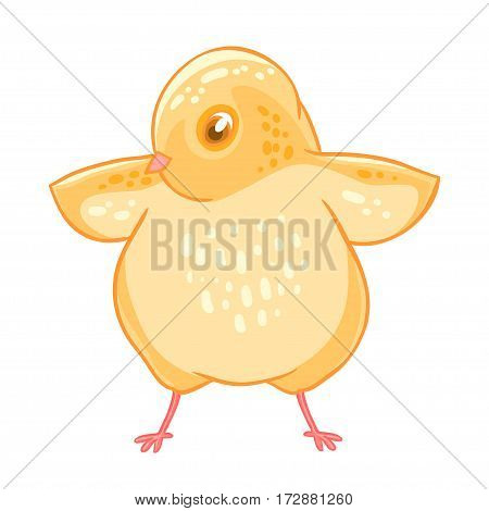 Yellow cute cheeper raised wings. Vector illustration isolated on white background.