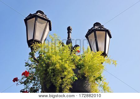 Street Light With Flowerbed