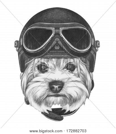 Portrait of Yorkshire Terrier with Vintage Helmet. Hand drawn illustration.