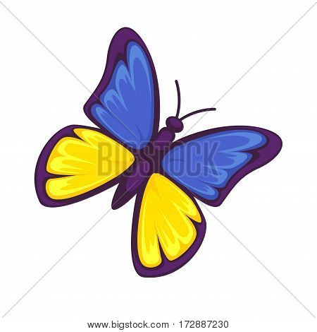 Butterfly in yellow and blue colors isolated on white background. Colorful nymph in colors of Ukrainian flag. Insect with large brightly colored wings fluttering during flight realistic vector
