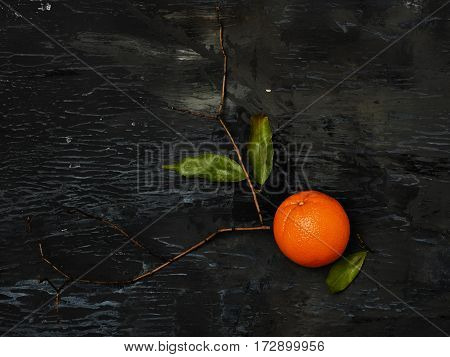 The group of fresh citrus oranges on a wooden board