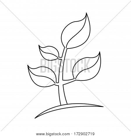 silhouette plant icon stock, vector illustration design