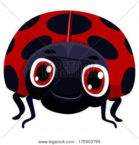 Vector Illustration of One Lady Bug Cartoon