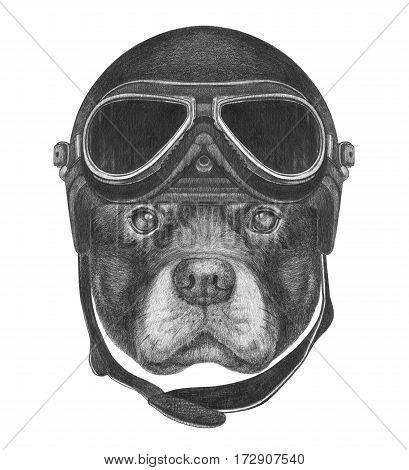 Portrait of Rottweiler with Vintage Helmet. Hand drawn illustration.