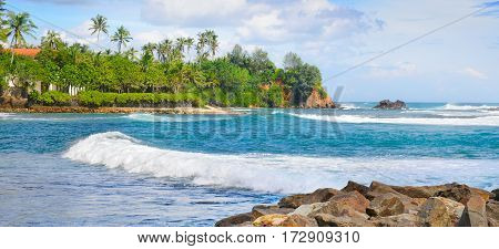 beautiful ocean tropical palms on the shore and cloudy sky