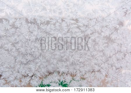 Frost on glass. Glass froze and became covered with ice